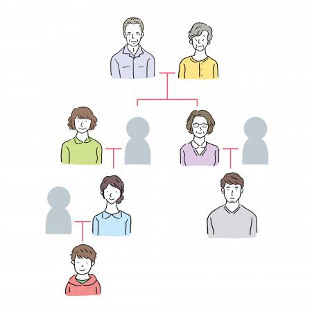 家系図を作るには?家系図を作る際の調査方法を完全解説!