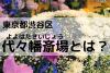 代々幡斎場とは?東京都渋谷区にある代々幡斎場を完全解説!