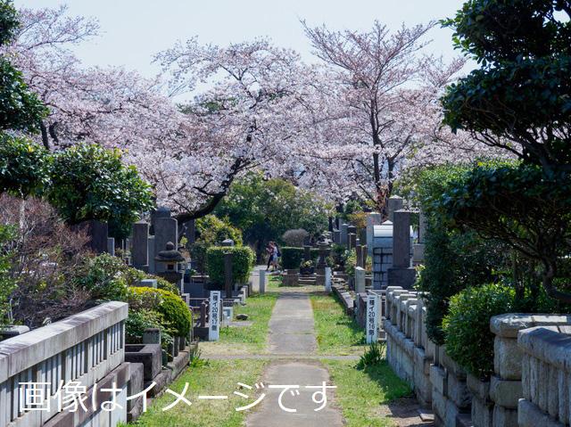 久成寺境内墓地