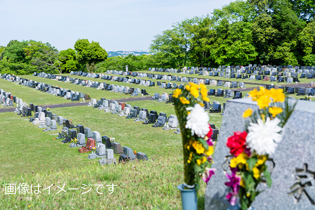 太田尾墓の下墓地