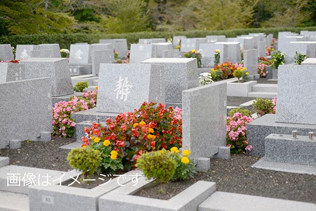 畑中共同墓地